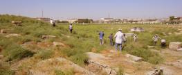 Уборка територии Бухарского Еврейского Кладбища -2017 год